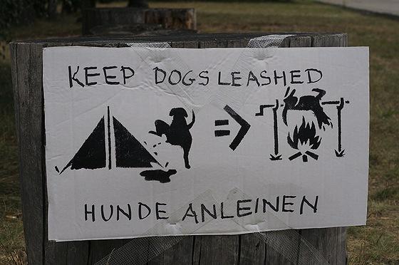 warnung dem hunde
