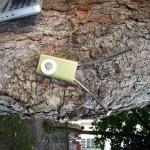 iPod mini grün